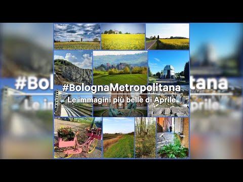Le immagini più belle di aprile da #bolognametropolitana