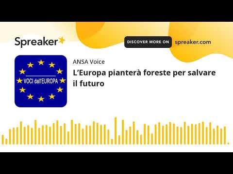 L'Europa pianterà foreste per salvare il futuro
