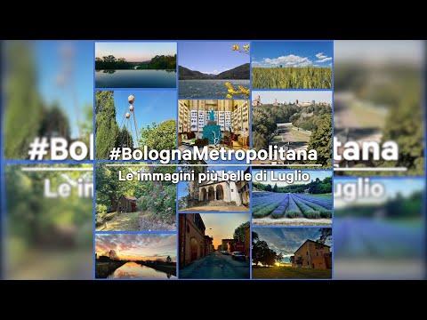 Le più belle immagini di Luglio da #bolognametropolitana