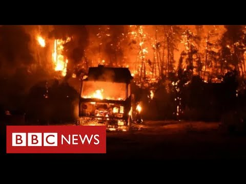 Greek island evacuated as wildfires rage in worst heatwave for 30 years - BBC News