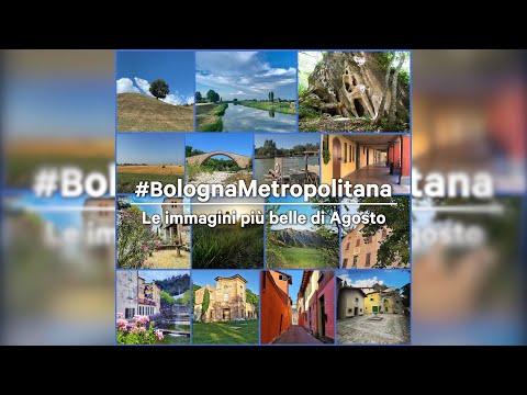 Le immagini più belle di agosto da #bolognametropolitana