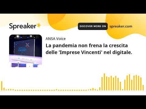 La pandemia non frena la crescita delle 'Imprese Vincenti' nel digitale.